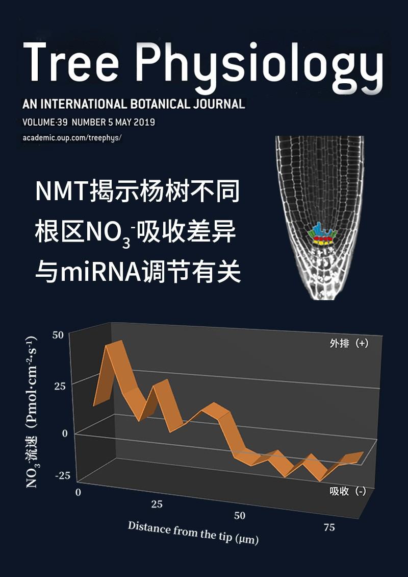 NMT揭示杨树不同根区NO3-吸收差异与miRNA调节有关
