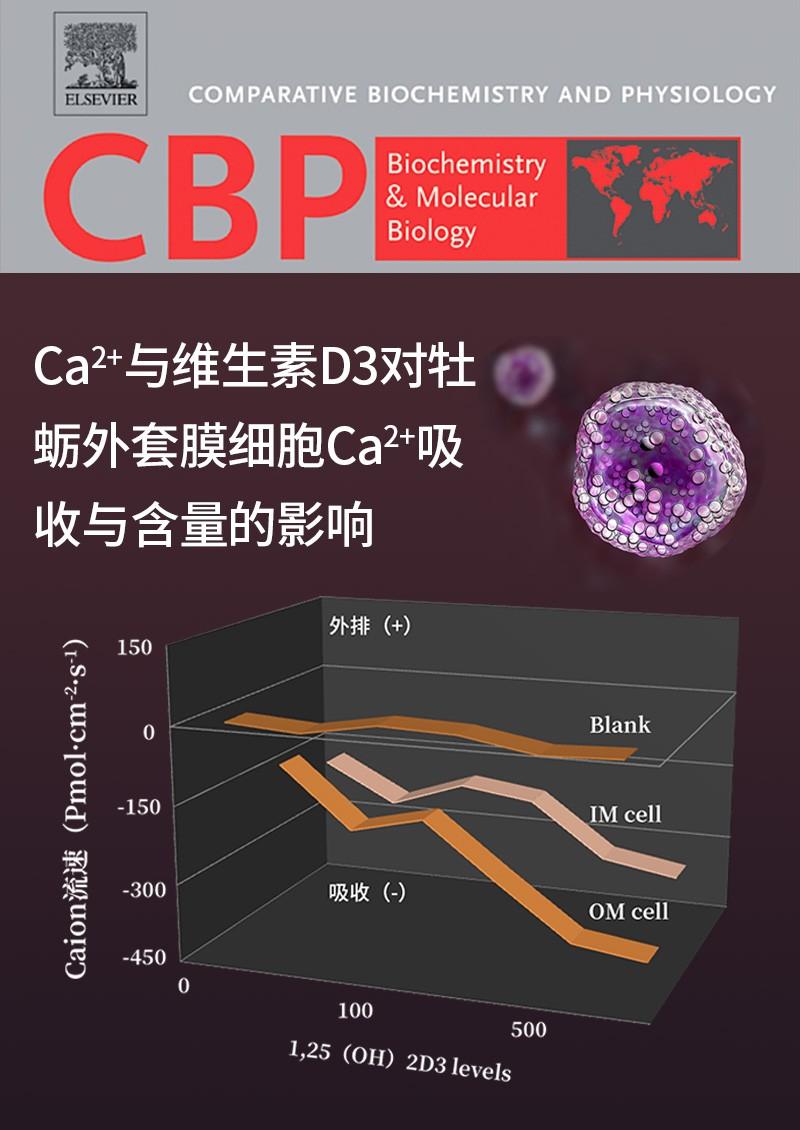 Ca2+与维生素D3对牡蛎外套膜细胞Ca2+吸收与含量的影响