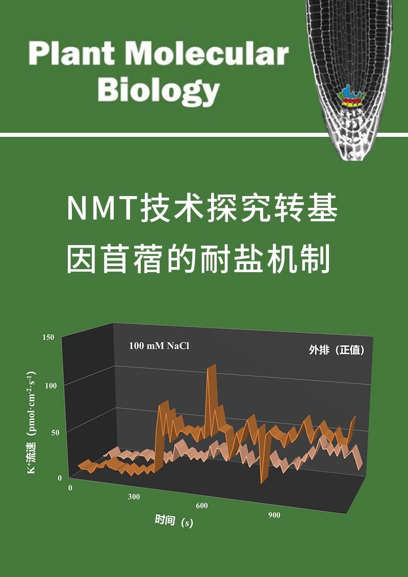 NMT技术探究转基因苜蓿的耐盐机制
