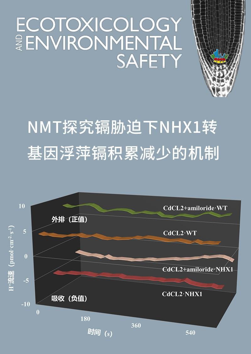 NMT探究镉胁迫下NHX1转基因浮萍镉积累减少的机制