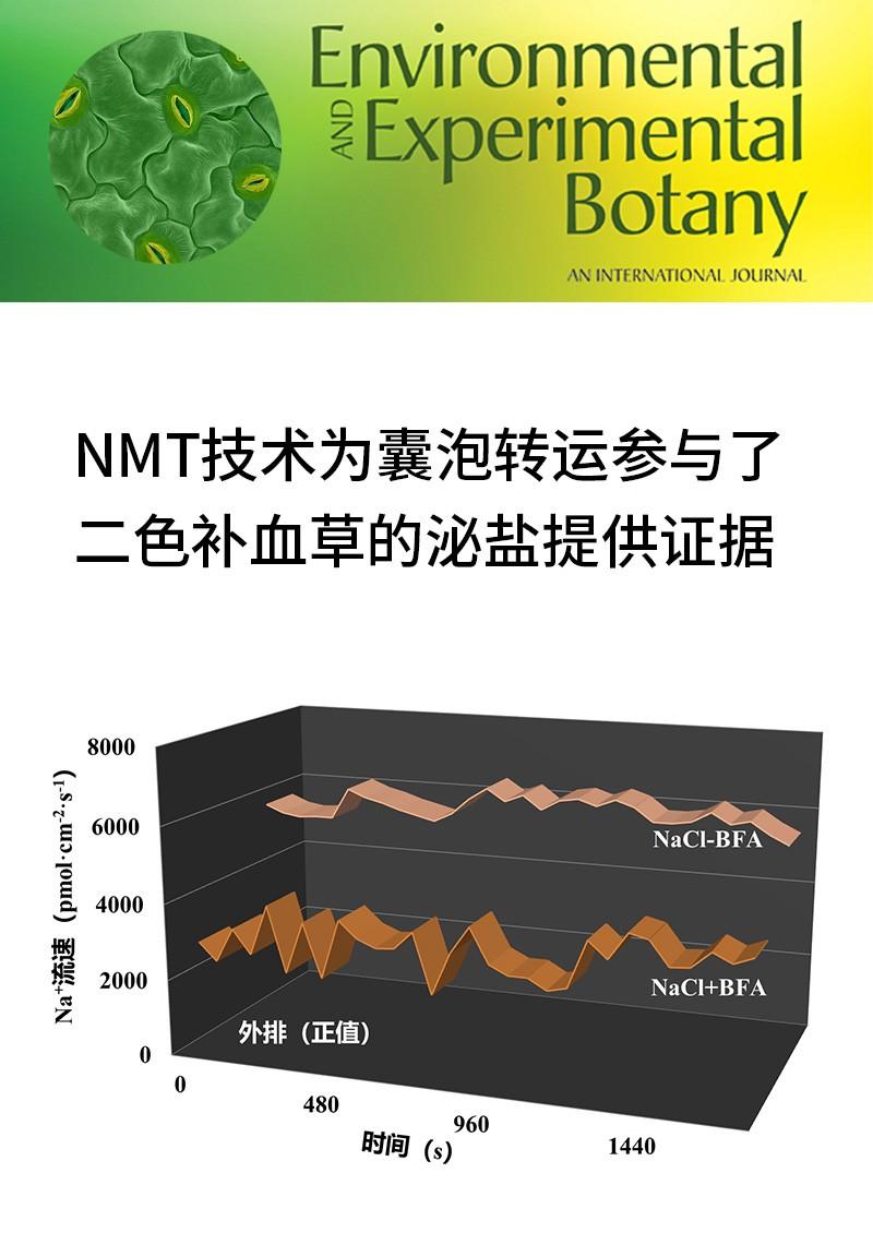 NMT技术为囊泡转运参与了二色补血草的泌盐提供证据
