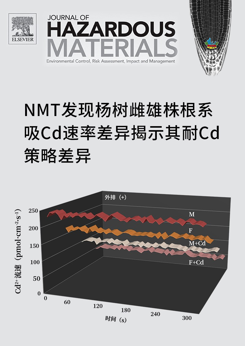 NMT发现杨树雌雄株根系吸Cd速率差异揭示其耐Cd策略差异